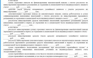 Сведения о состоянии индивидуального лицевого счета расшифровка