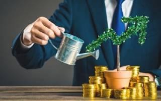 Увеличение уставного капитала за счет имущества учредителя